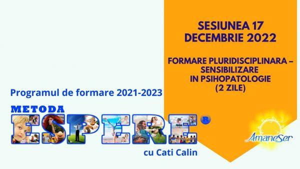 Sesiunea 17 decembrie 2022 Formare pluridisciplinara – Sensibilizare in psihopatologie (2 zile)
